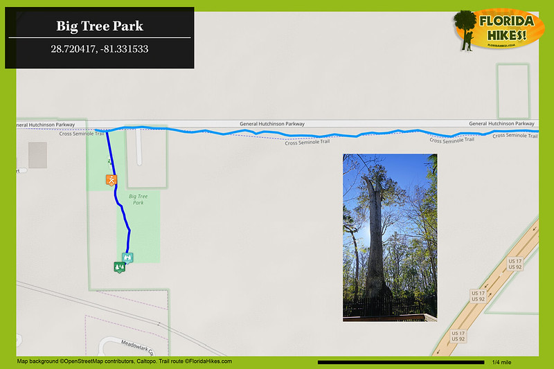 Big Tree Park Trail Map