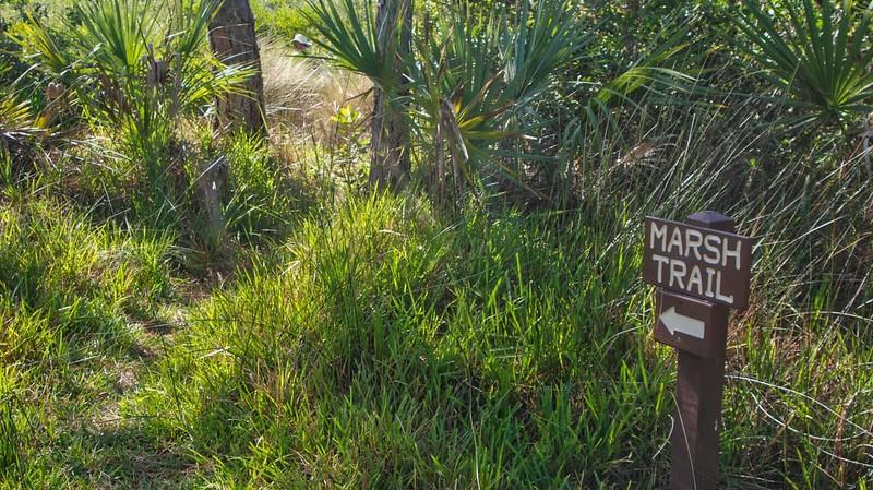 Marsh Trail sign