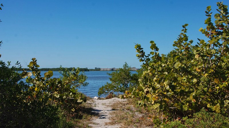 Lemon Bay bluff