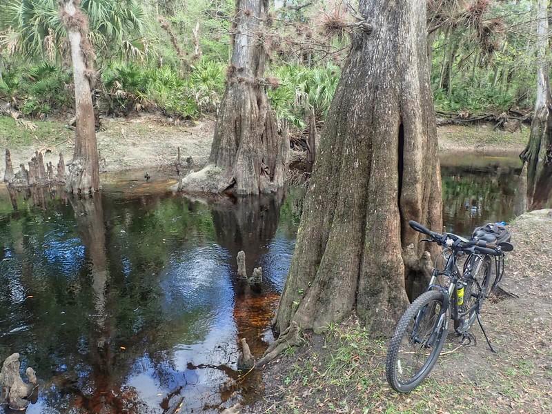 Econ River bike