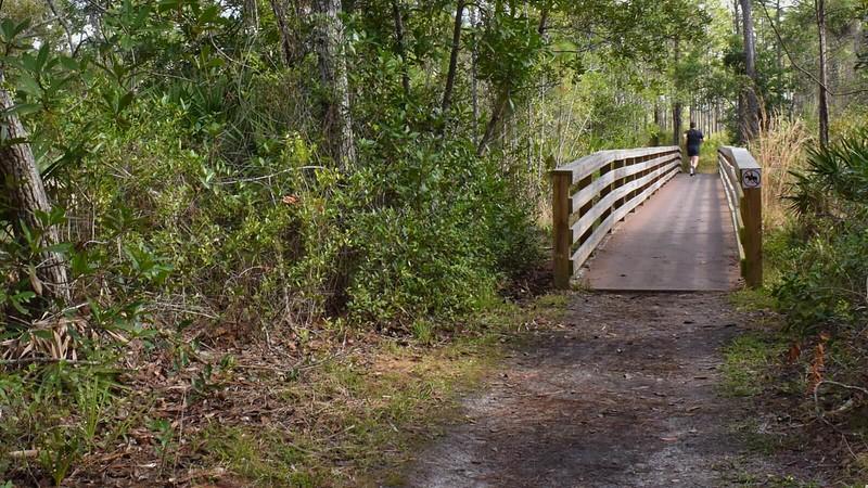 Trail runner Econ River Wilderness