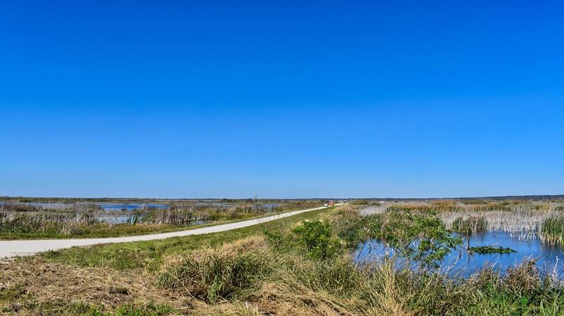 Lake Apopka wetlands