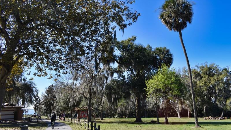 Magnolia Park