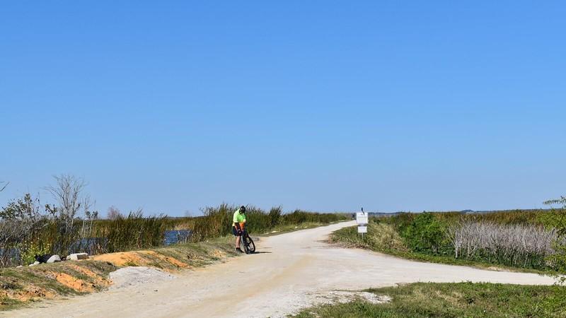 Cyclist on Lake Apopka Loop