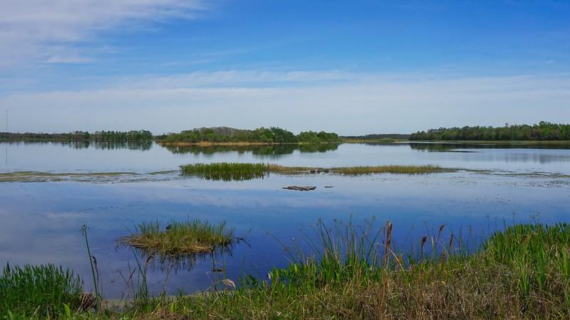 Lake Searcy