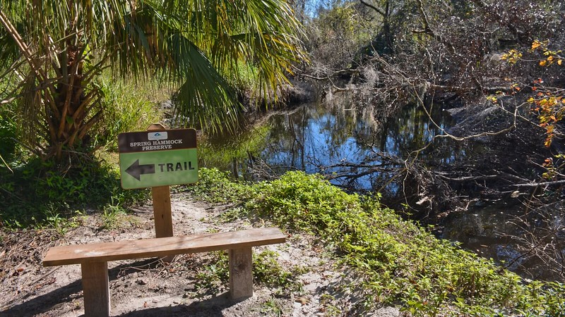Trail sign and bench