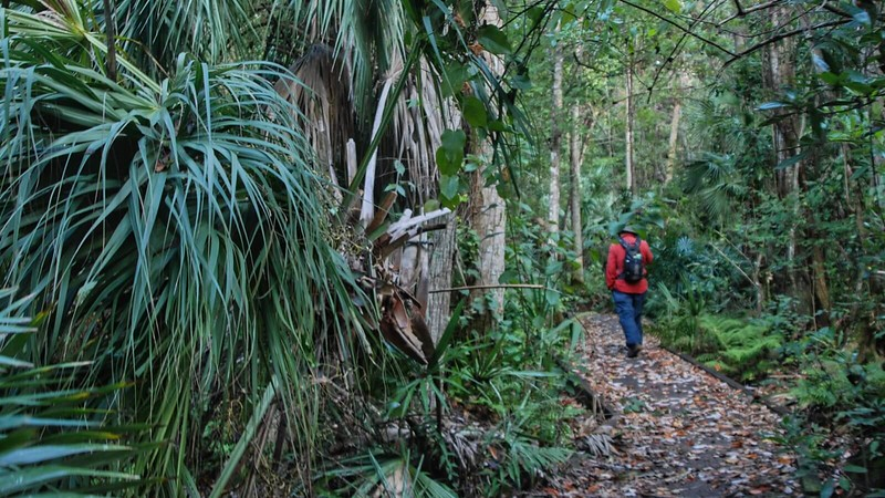 Magnolia Trail