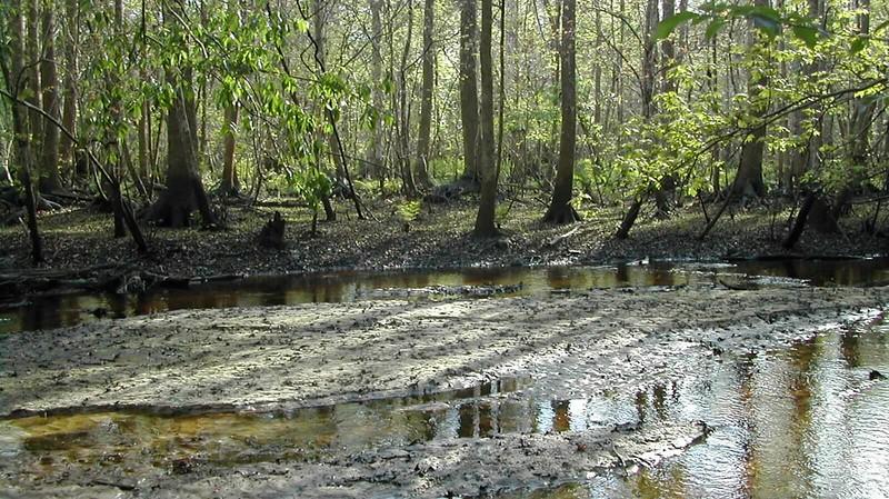 Soldier Creek 2006