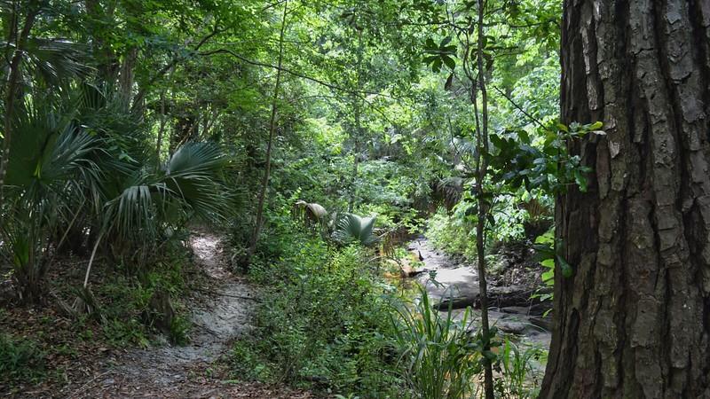 Bluffs along Soldier Creek