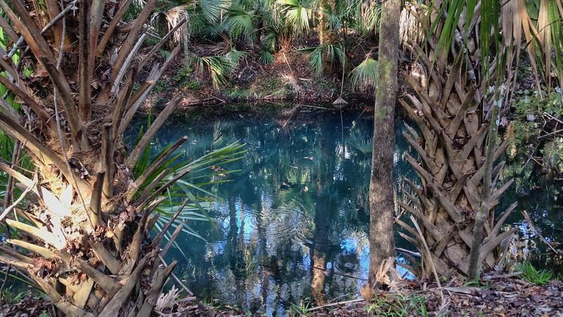 Question Pond