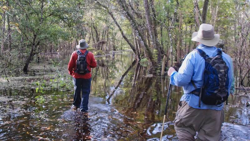Flooded Osprey Trail