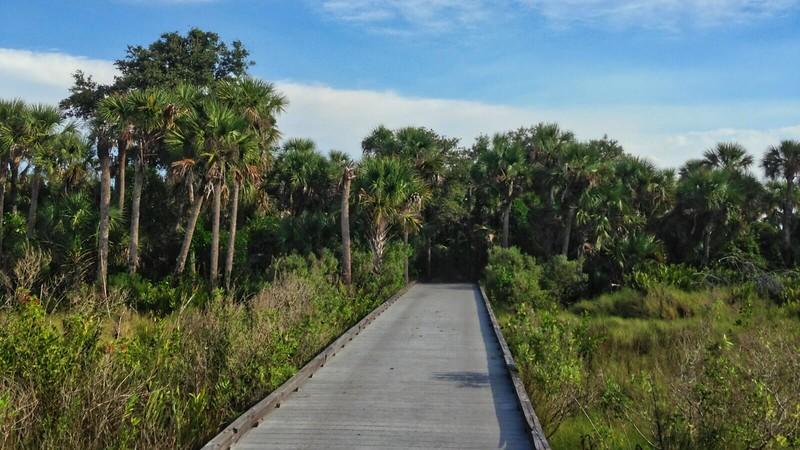 Tippecanoe estuary boardwalk