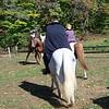 Headless Horseman. Manny and Zeus.