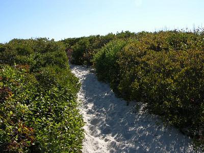 2010-10-10 Island Beach State Park