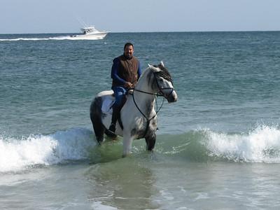 2012-10-12 Island Beach State Park