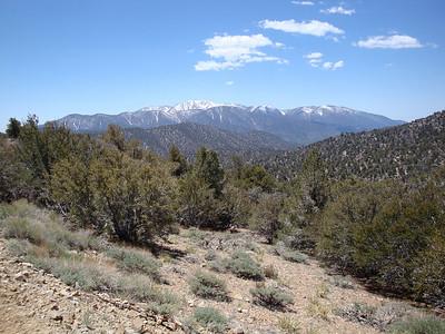 Fire Road Run - Onyx Summit  to Onyx Peak via FSN101  5.18.08