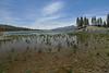 Big Bear Lake - Grout Bay