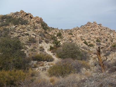 Trail Run - Johsua Tree - Boy Scout Trail to Key's Peak 12/16/06