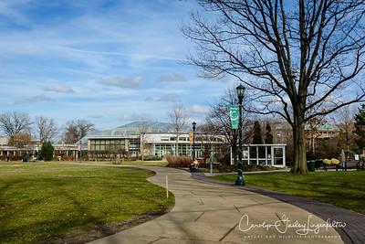 Botanical Garden entrance