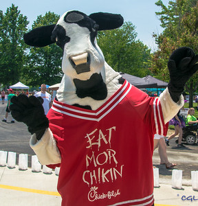 The Chick-Fil-A cow, July 11, 2015