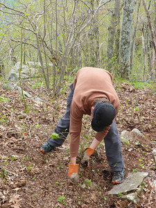Mike Knutson clearing the trail (5/18/14).
