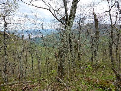 View of Ashokan Reservoir and Samuels Point (5/18/14).