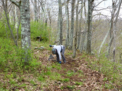 Ellen clearing the trail (5/18/14).
