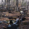 Wurtsboro_Ridge4 11-4-11
