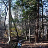 Wurtsboro_Ridge5 11-4-11