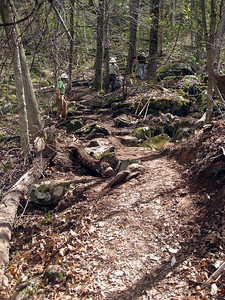 Trail section (picture Bob Fuller).