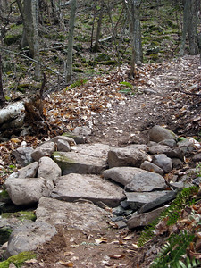 Stone walkway (picture Bob Fuller).