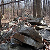 Highlands Trail on Orange & Rockland property in Monroe, NY.