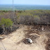 View (down) from the fire tower.