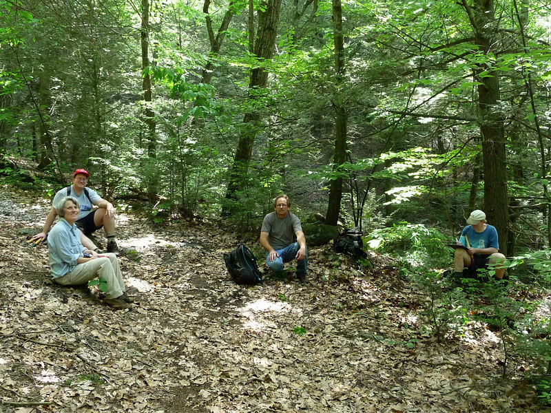 Work trip extending the Lenape Ridge Trail in Deerpark, NY (Judy, Doug, Andy, Brian).