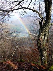 Looking east from Mt. Pleasant, Catskills, 10/26/14