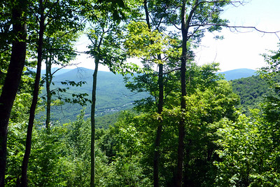 View east from Romer Mtn. (7/5/14)