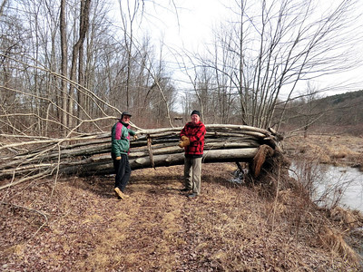 Neil and Tom in front of the 14-trunk blowdown along the Bashakill railtrail (3/18/13).