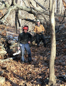 On 1-10-13 Dave, Thom and I took care of the last 17 blowdowns along the LP in Tallman Mtn. State Park.