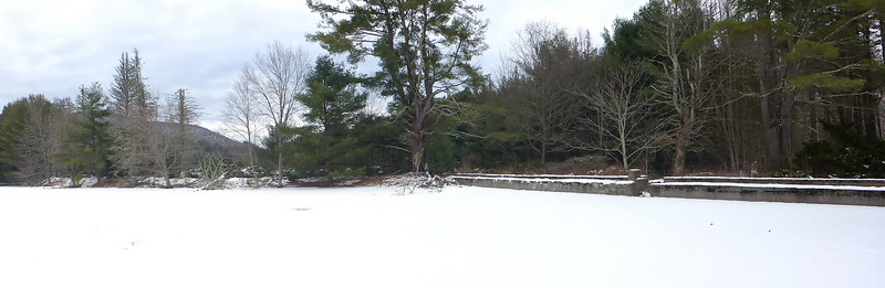 Brownville pond, looking north.