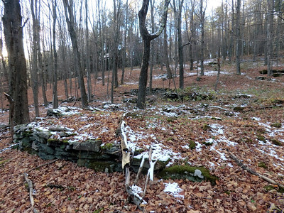 Lots of stone walls and ruins off Jim Cleveland Road.