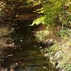 Minisceongo creek in Mt Ivy.