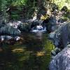 Woodbury Creek (8/6/15).