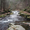 Warner_Creek1 11-11-09