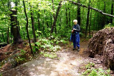 Trail cleared.