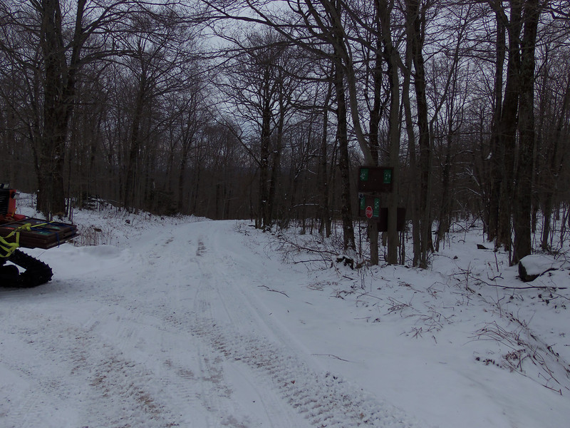 January 2014 at the CCC and Black Swamp Roads