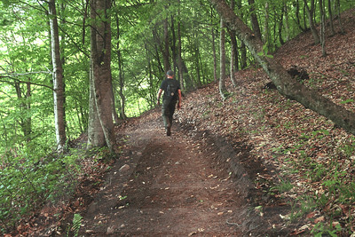 Hiking Trails in Dilijan National Park