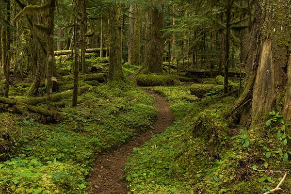 Trails I've Walked