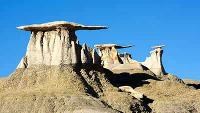 Wings over Bisti