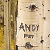 While poking around in the woods, I found that someone had labeled one of the aspens with my name. Not me!!