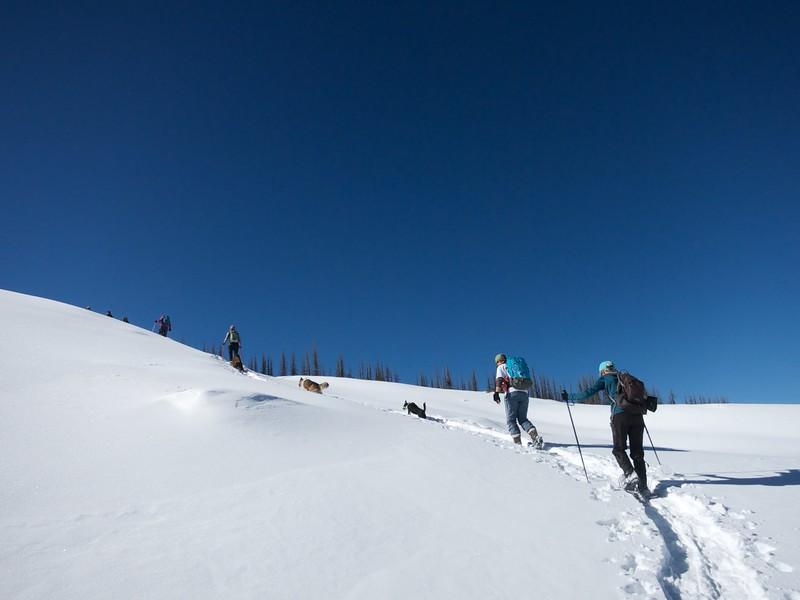 Climbing one of the rock garden slopes